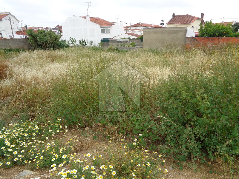 Terreno com 572 m² em Tires, São Domingos de Rana